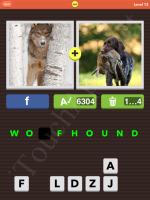 Pic Combo Level 450 Answer