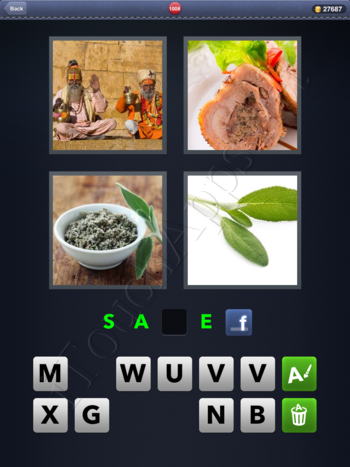 4 Pics 1 Word Level 1008 Solution