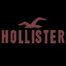 Logos Quiz Level 13 Answers HOLLISTER